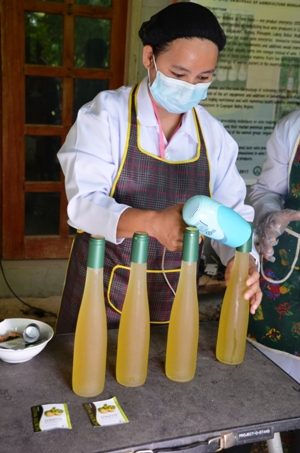 Fruit winemaking in Cagayan Valley gets much needed boost